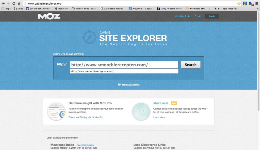 Open Site Explorer search